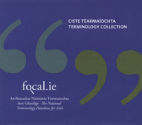 Focal.ie Terminology Collection