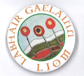 Badge - Speak Irish to Me