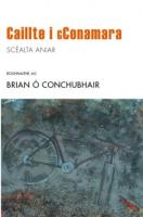 Caillte i gConamara: Scéalta Aniar